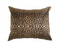 Padjapüür Leopard